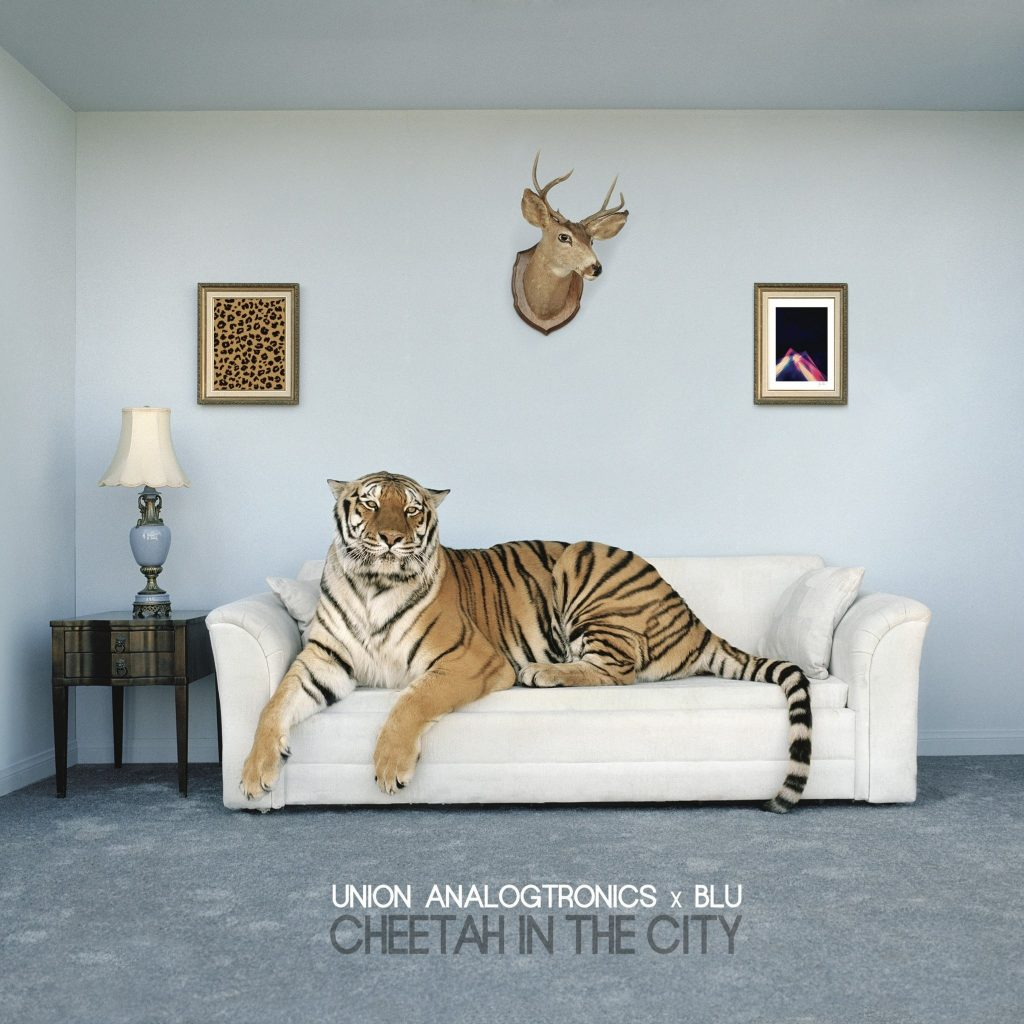 cheetah-in-the-city