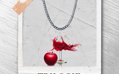 Seizur - Trilogie (Cover)
